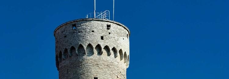 Длинный Герман в Таллине