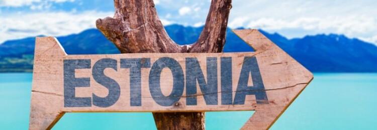 ID-карта Эстонии – что это и как получить