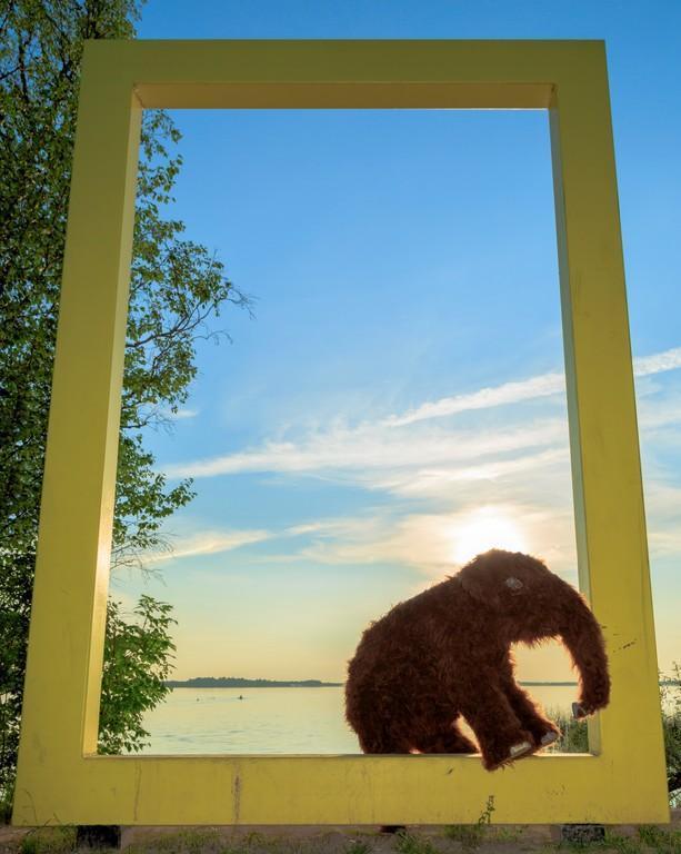 Желтое окно National Geographic, находящееся рядом с Центром ледникового периода
