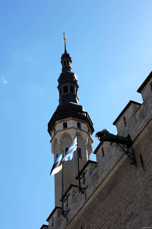 Башня Таллинской ратуши