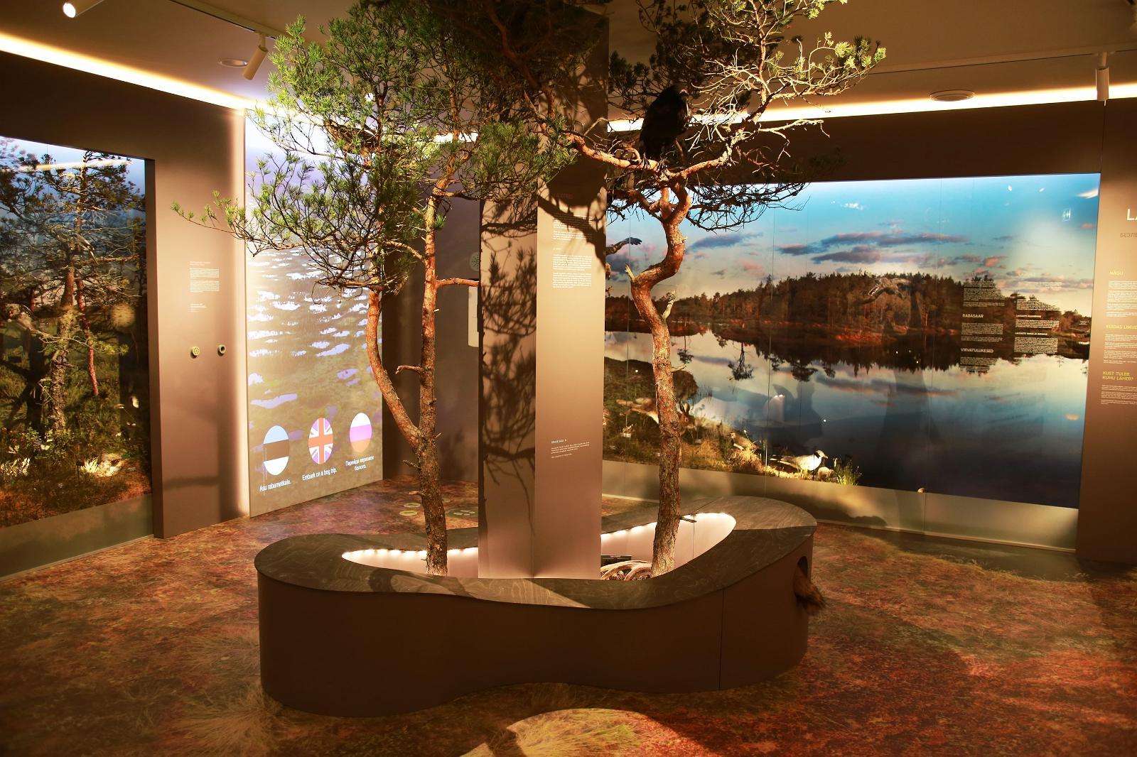 Эстонский музей природы
