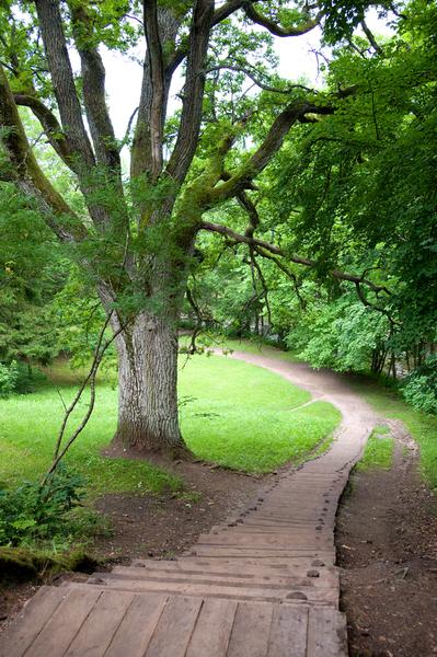 Тропинка в парке Кейла Йоа