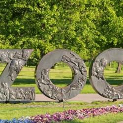 Таллинскому зоопарку нужны соски