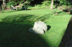 Скульптура в ботаническом саду Тарту