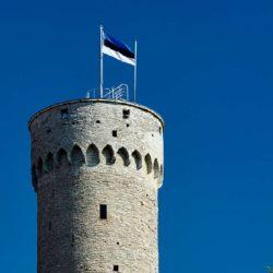 Башня Длинный Герман Таллин