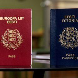 Гражданство Эстонии: как получить гражданство Эстонии