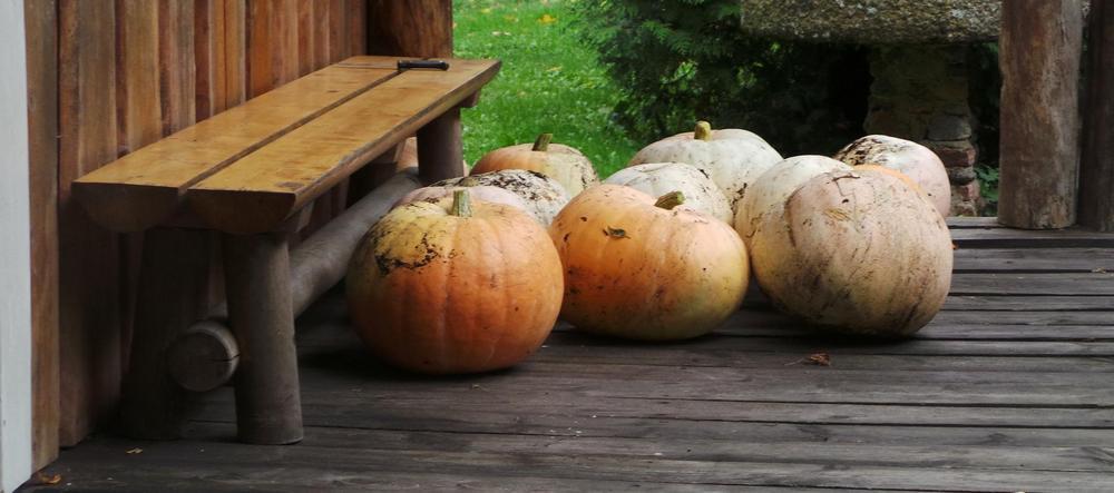 Хэллоуин в Эстонии