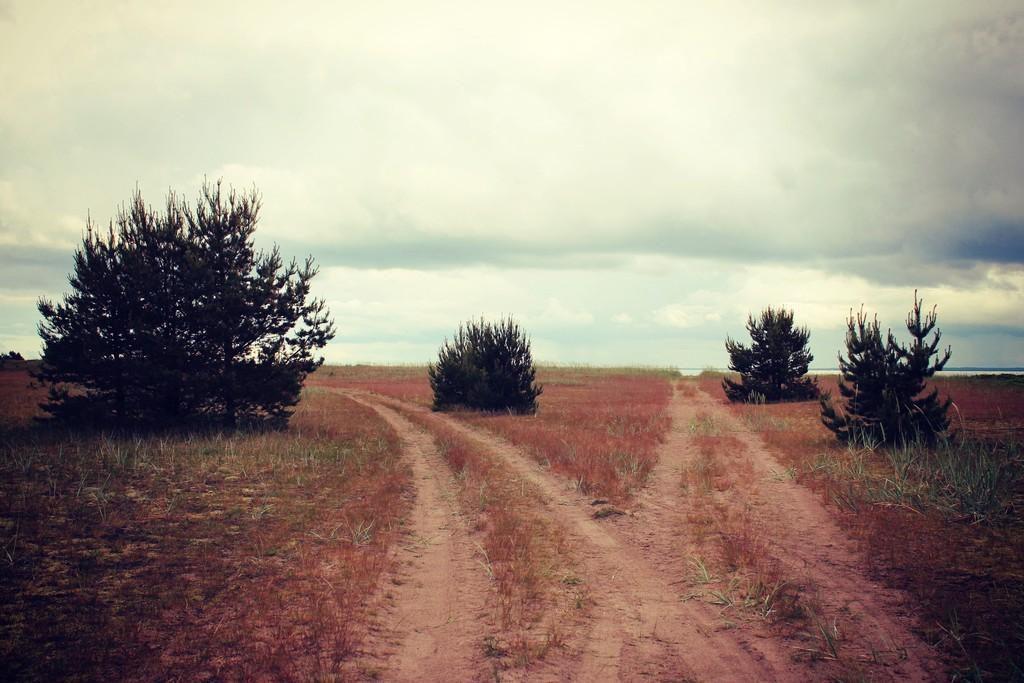 Остров Прангли, Эстония