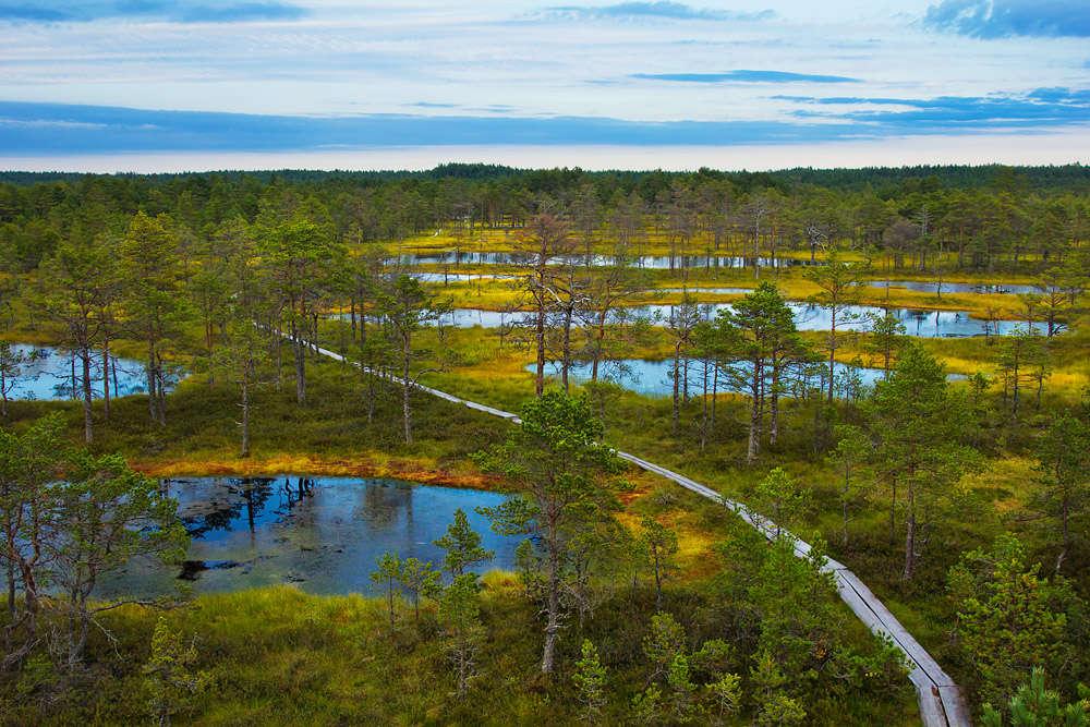 Окрестности Таллина: Национальный парк Лахемаа